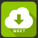 Куда wget сохраняет скачанные файлы